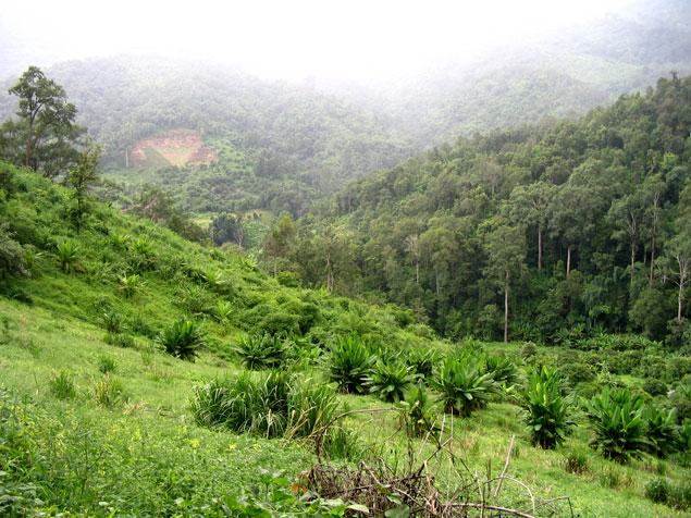 zona por donde se realiza el trekking