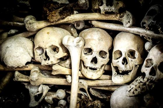 Cráneos de las cuevas