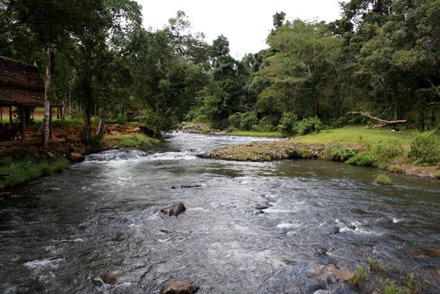 Caudal del río