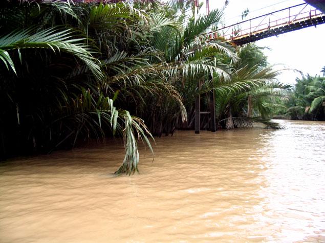 Canal del Delta