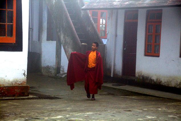 Pequeño monje, en el Yiga Choling Gompa