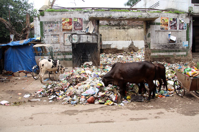 10 cosas que no me gustaron de la India (Montañas de basura)