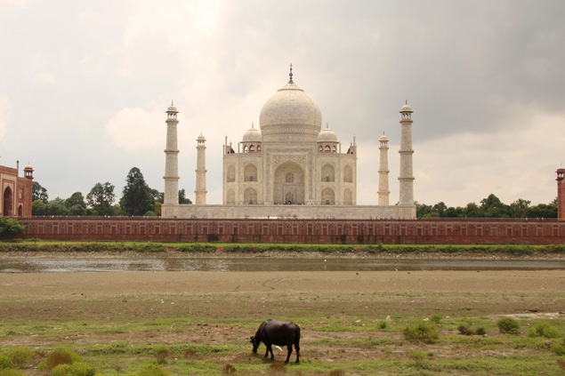 El Taj Mahal desde el Mehtab Bagh