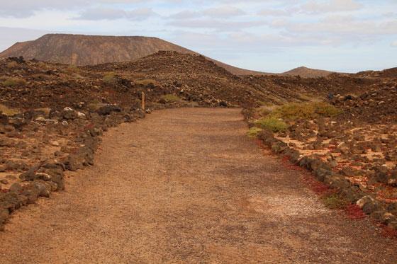 Isla de Lobos (Camino hacia el faro)
