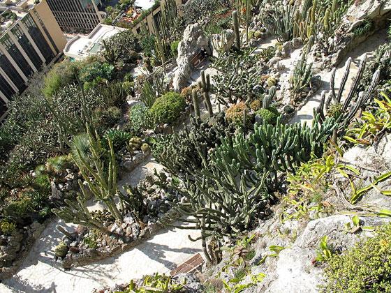 Jardín exótico Mónaco