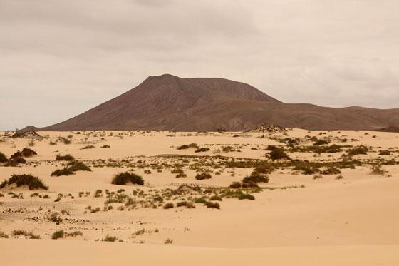 Paisaje mas propio del desierto