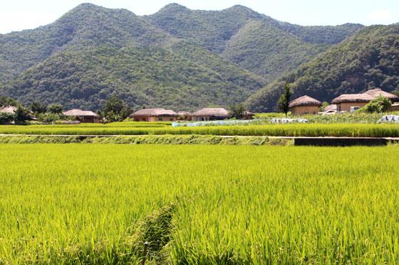Aldea Hahoe en Andong