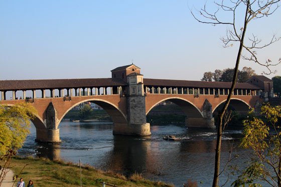 Que ver cerca de Milán (Pavia)