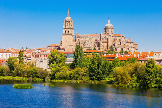 La catedral de Salamanca es una catedral de estilo gótico