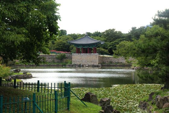 Vistas del estanque