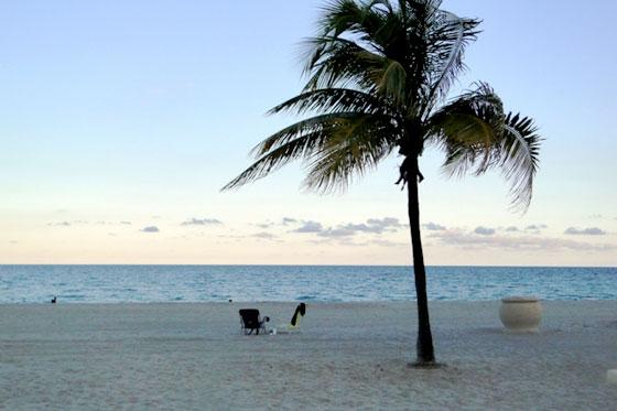 Cayos Miami