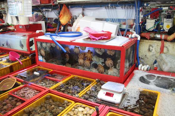 Especies del Jagalchi Market