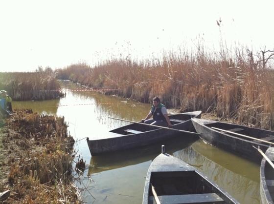 que ver y hacer en el delta de l'Ebre , barcas tradicionales