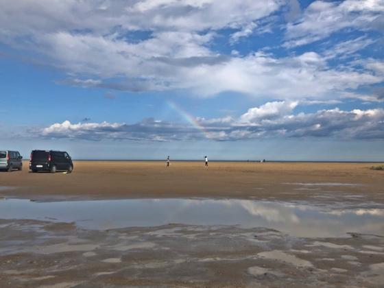 Que ver y hacer en el Delta del Ebro ..playas de ensueño